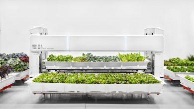 Photo of مزارع رباتیک آینده زمین، چیزی نیست که شما انتظار داشته باشید