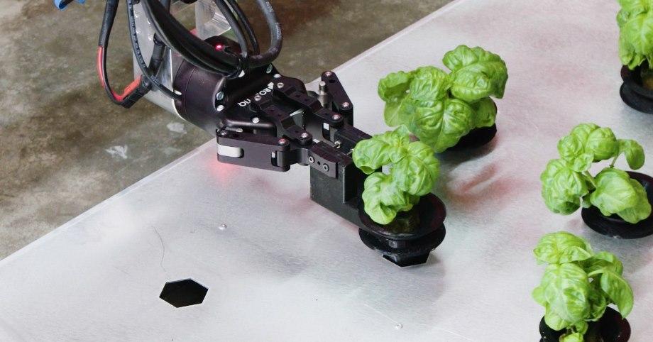 مزارع رباتیک کشاورزی