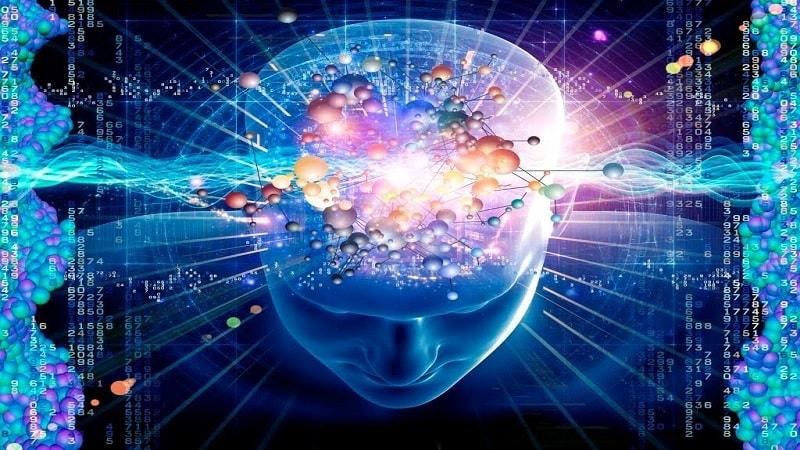 ساختار مغزی موسیقی دانان