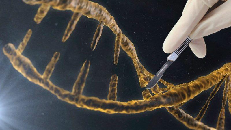 اصلاح ژنتیکی انسان