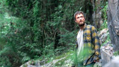 Photo of جنگل گردی | چگونه در جنگل زنده بمانیم