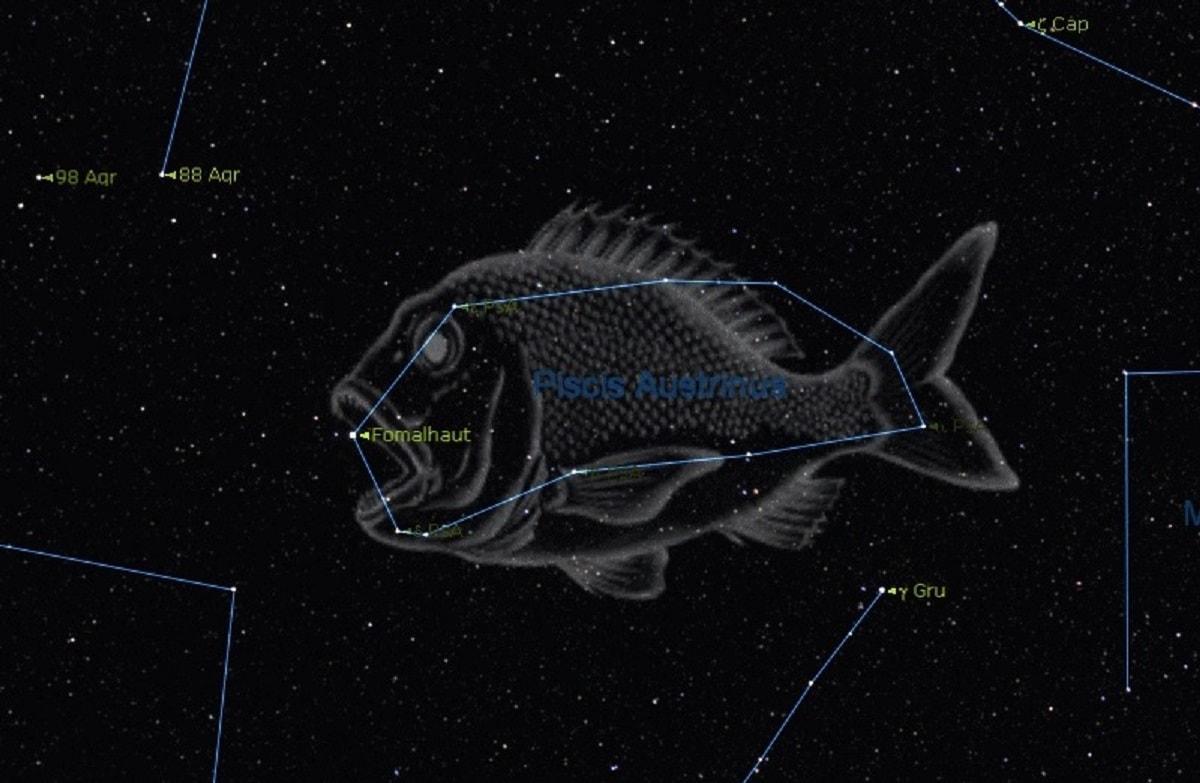 صورت فلکی ماهی زرین