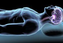 Photo of وضعیت مغز حین خواب : موقع خوابیدن مغز چه فعالیت هایی دارد؟