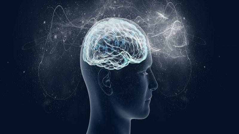 وضعیت مغز حین خواب