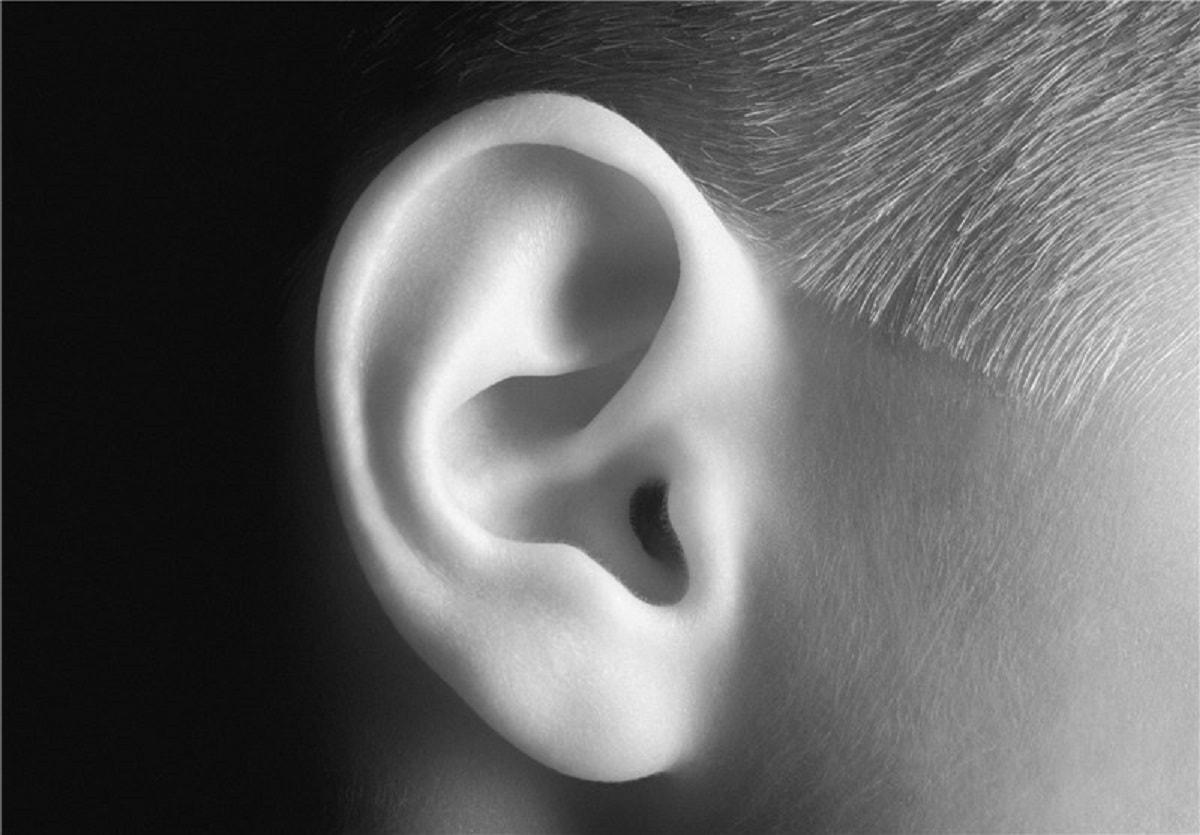 عجایب انسان | رشد گوش ها