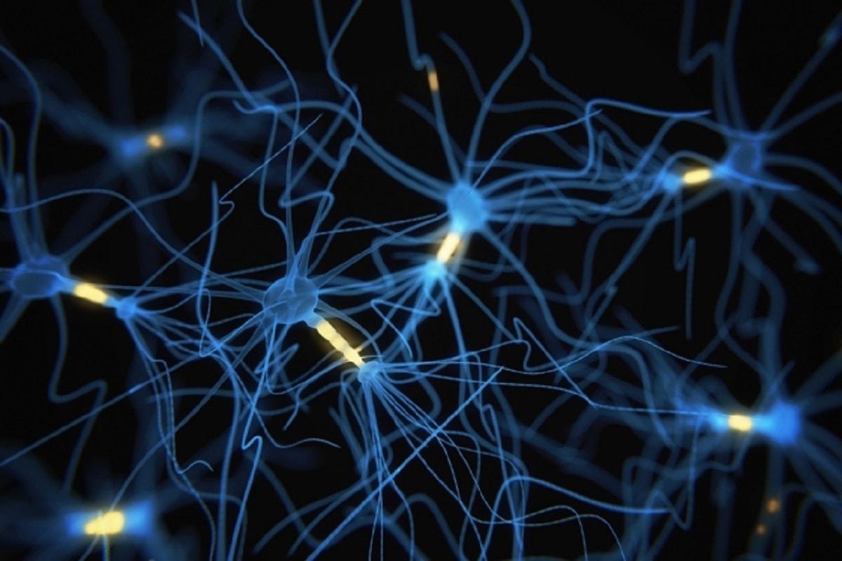 رشد مغز انسان تا 40 سالگی
