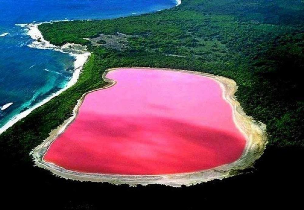 دریاچه صورتی در استرالیا