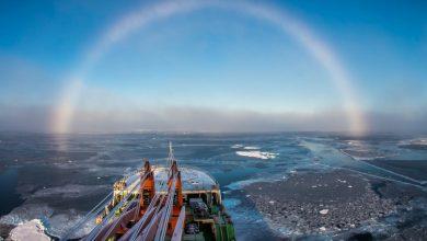 Photo of عجیب ترین پدیده های طبیعی جهان که می شناسیم
