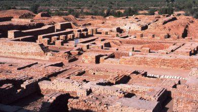 Photo of بزرگترین کشفیات تاریخی بشر روی کره زمین کدام ها بودند؟