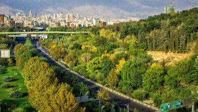 Photo of سفری به پارک های جنگلی تهران