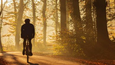 Photo of بهترین مسیرهای دوچرخه سواری در ایران با چشم اندازهای فوق العاده
