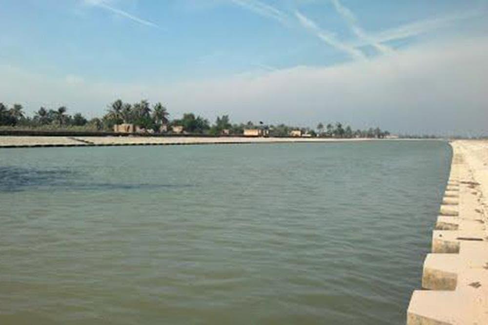 جزیره مینو