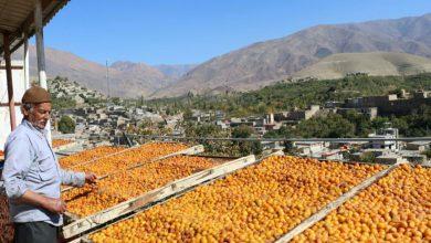 Photo of «خرو»، پایتخت آلو، شهر طلوع خورشید و بامهای طلایی