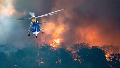 Photo of آتشسوزی جنگلهای استرالیا