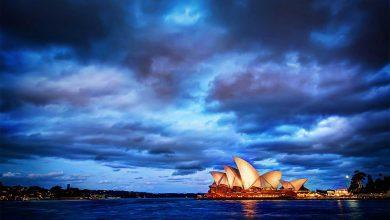 Photo of استرالیا «گونههای متنوع جانوری را در استرالیا ببینیم»