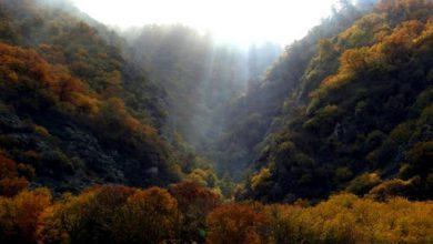 Photo of پارک ملی گلستان «نگین سبز شمال شرق ایران»